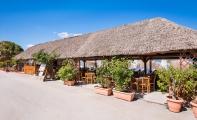 mistrali-beach-taverna0025